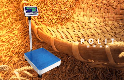 電子台秤|沛禮國際電子秤專賣