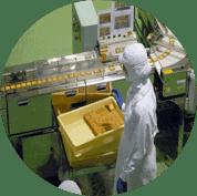 食品廠 應用市場   沛禮國際 Polit 電子秤專賣